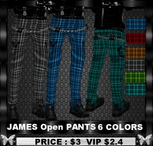 JAMES OPEN PANTS