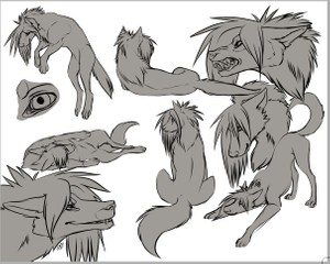 Canine Collage LINEART BASE