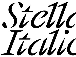Stellage Constructed Italic