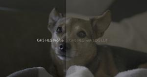 GH5 HLG LUTS