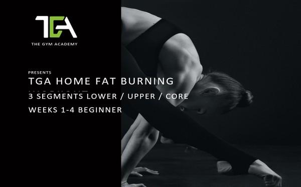 Home Fat Burning Beginner