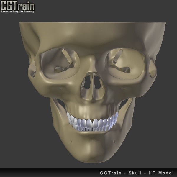 Skull - 3D Print model