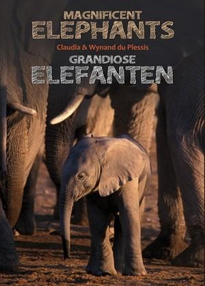 Magnificent elephants / Grandiose Elefanten