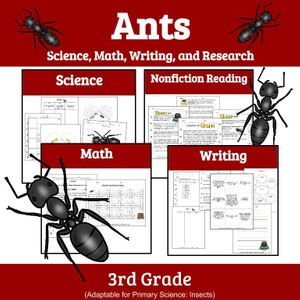 Ants: A Unit Study of Ants