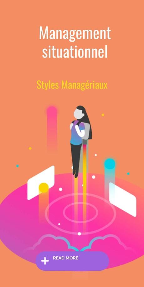 Styles management
