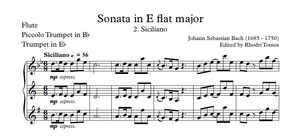 Bach BWV 1031 Sonata in E flat major. Piano accompaniment mp3 & solo sheet music pdf.