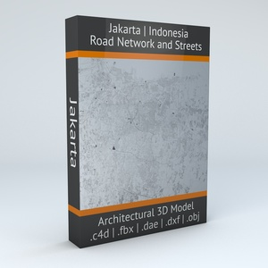 Jakarta Road Network and Streets Architectural 3D model