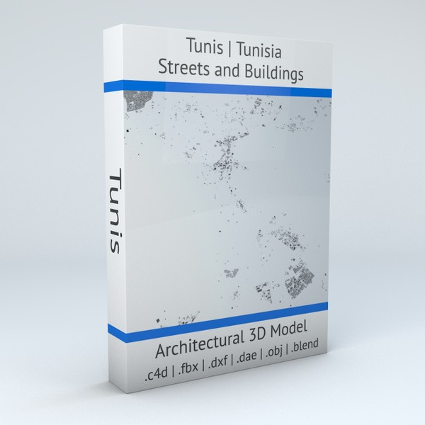 Tunis Streets and Buildings Architectural 3D model