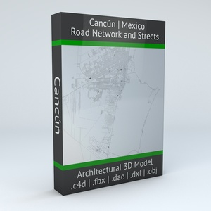 Cancun Road Network and Streets Architectural 3D model