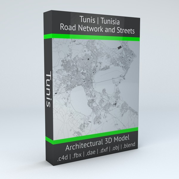Tunis Road Network and Streets Arhitectural 3D model