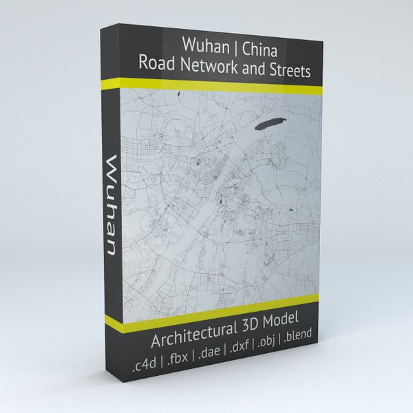 Wuhan Road Network and Streets 3D model