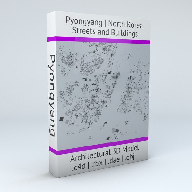 Pyongyang Downtown Area Streets and Buildings Architectural 3D Model