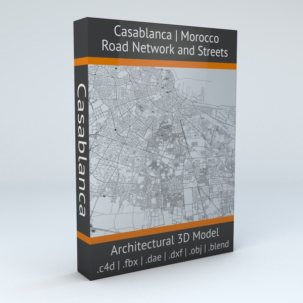 Casablanca Road Network and Streets Architectural 3D model