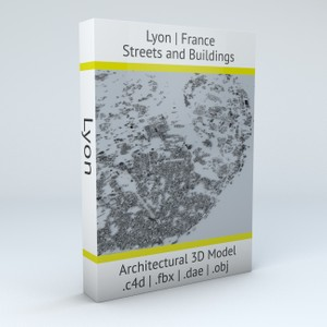 Lyon Streets and Buildings Architectural 3D Model