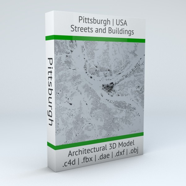 Pittsburgh Streets and Buildings Architectural 3D model