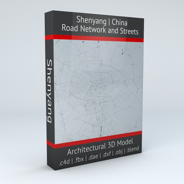 Shenyang Road Network and Streets 3D model
