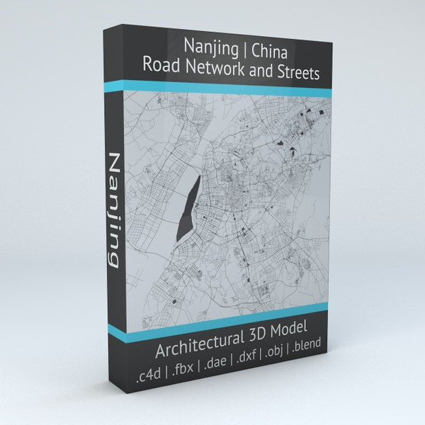 Nanjing Road Network and Streets 3D model