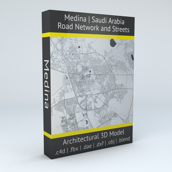 Medina Road Network and Streets Architectural 3D model