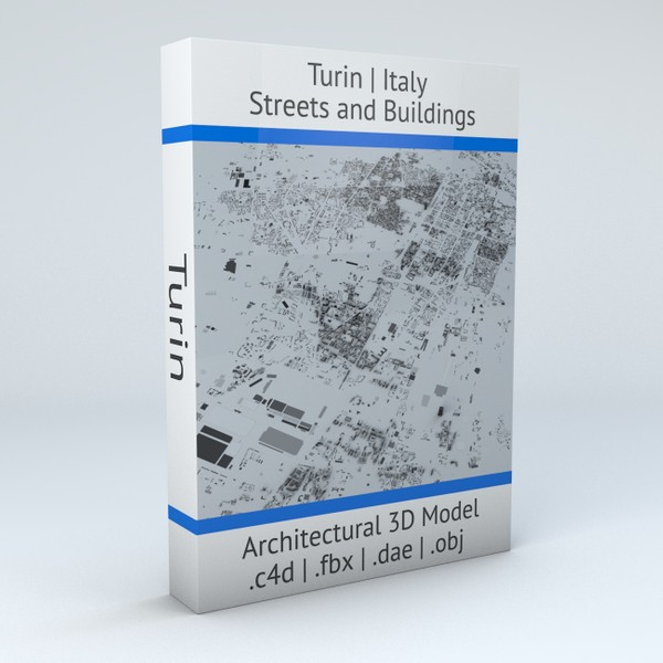 Turin Streets and Buildings Architectural 3D Model