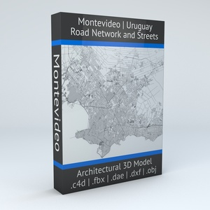 Montevideo Road Network and Streets Architectural 3D model