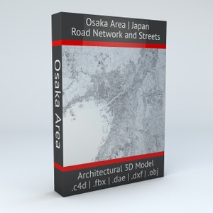 Osaka Area Road Network and Streets Architectural 3D model