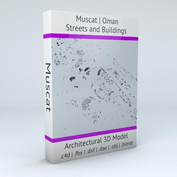 Muscat Streets and Buildings Architectural 3D model