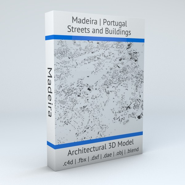 Madeira Streets and Buildings Architectural 3D model