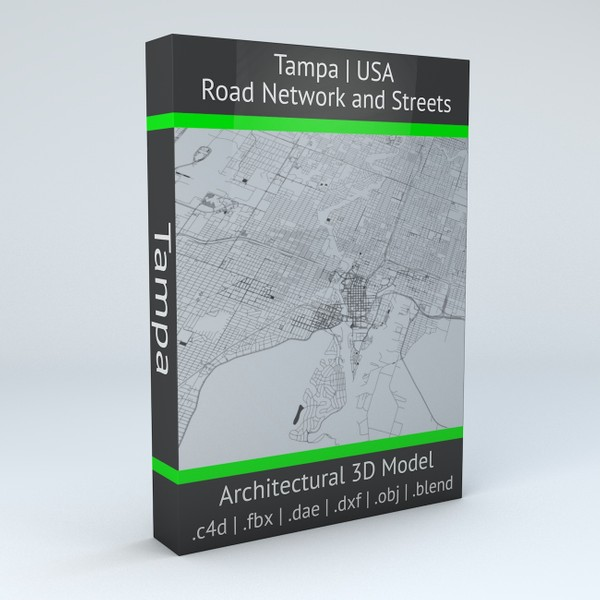 Tampa Road Network and Streets Architectural 3D model