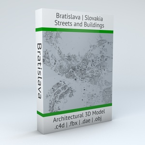 Bratislava Streets and Buildings Architectural 3D Model