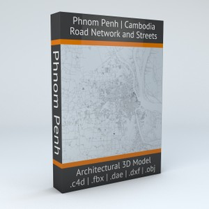 Phnom Penh Road Network and Streets Architectural 3D model