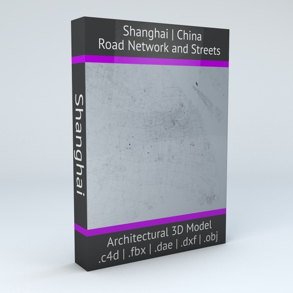 Shanghai Road Network and Streets Architectural 3D model