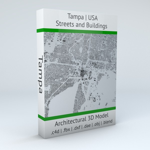 Tampa Streets and Buildings Architectural 3D model