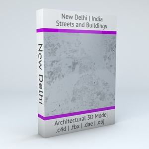 New Delhi Streets and Buildings Architectural 3D Model