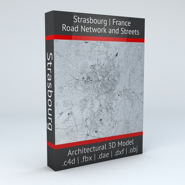 Strasbourg Road Network and Streets Architectural 3D model
