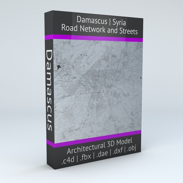 Damascus Road Network and Streets Architectural 3D model