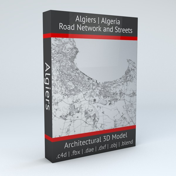 Algiers Road Network and Streets Architectural 3D model