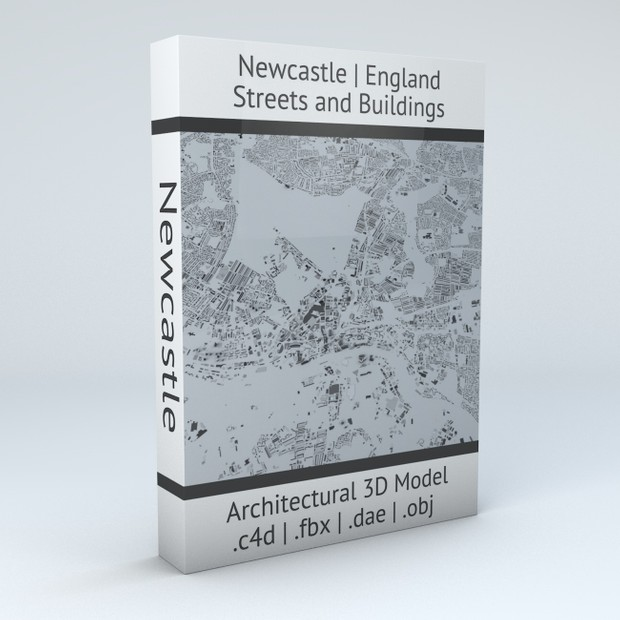 Newcastle Streets and Buildings Architectural 3D Model