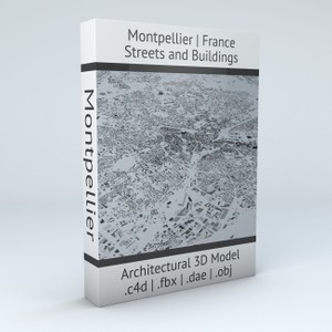 Montpellier Streets and Buildings Architectural 3D Model