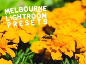 Melbourne Lightroom Presets