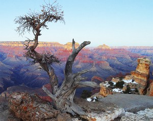 Grand Canyon No. 1