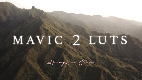 Free Trial - MAVIC 2 D-LOG LUT (1 LUT)