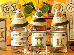 Gemini-zodiac-theme-party-printables-birthday-water-bottle-labels