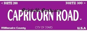 Capricorn Zodiac Street Signage JPEG Image