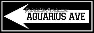 Aquarius Ave Left Arrow Signage #3