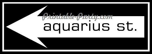 Aquarius St. Left Arrow Signage #2