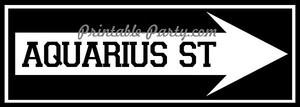 Aquarius St. Right Arrow Signage #2