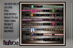 100 NEW BELTS AD ONS RESELL RIGHT ONLY 4 PEOPLE