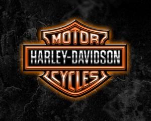 HARLEY-DAVIDSON-FL/FX 1200/1340CC-4 SPEED (1978-1984) SERVICE MANUAL