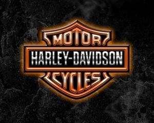 HARLEY-DAVIDSON, RAPIDO MODELS ML, MLS & MODEL TX (1968-1973) PARTS CATALOG