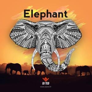 ELEPHANT 135.141 BPM